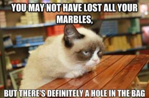 grumpy-cat-lost-your-marbles-hole-in-bag